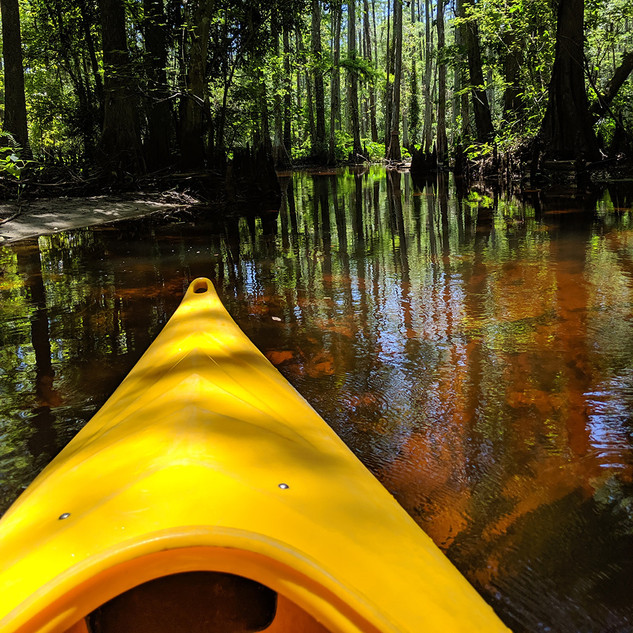 Family fun in Florida: 6 reasons you should stay in Kissimmee