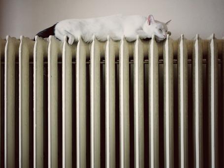 How do I bleed a radiator?