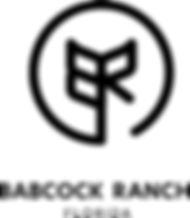 BR Logo - 400.jpg