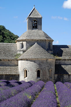 Abbaye_de_Se%CC%81nanque_-_11_edited.jpg