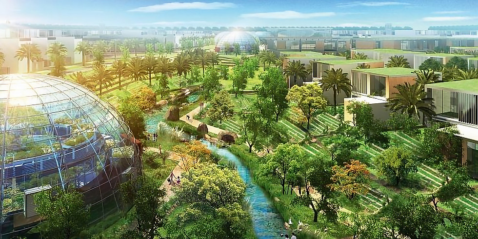 Sustainable city:  Global picture, local colour