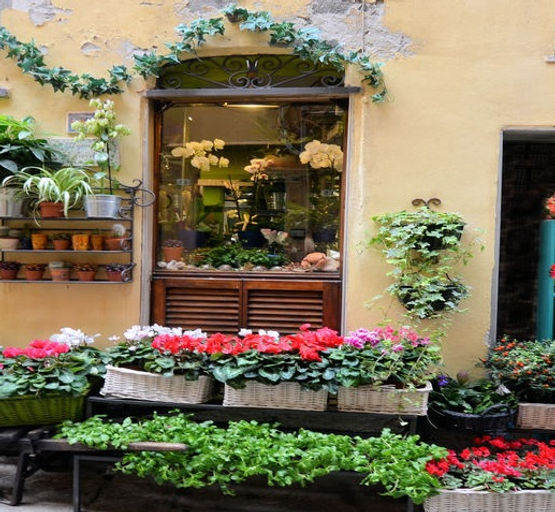Scenes from Italy 13  7-3-18.jpg