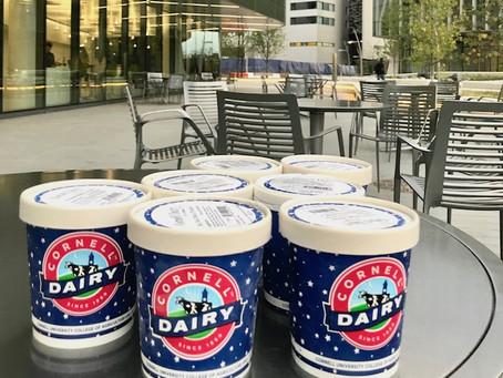 Roosevelt Island Gets Exclusive Access to Beloved Cornell Dairy Ice Cream
