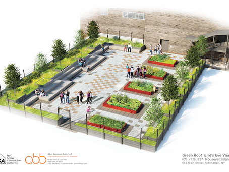 PS/IS 217 Prepares to Break Ground on Green Roof