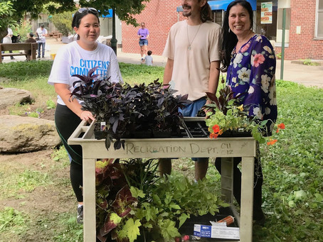 Island Gardeners Dig In to Coler Courtyard Restoration