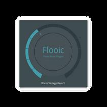 Flooic Vintage Reverb