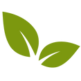 win-logo-leaf.png