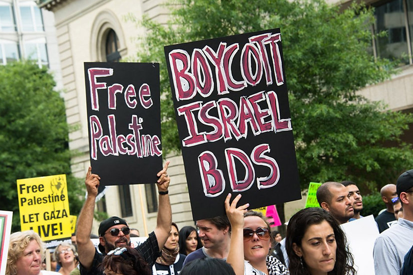 BDS photo.jpg