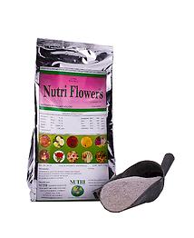 nutriflowers.png