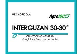 interguzan3030.jpg