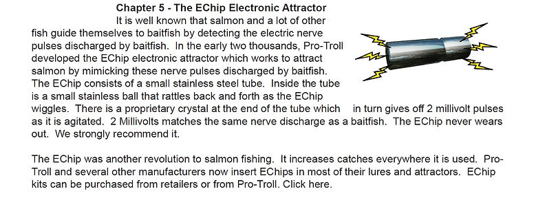 Ch 5 The EChip Electronic Attractor.jpg