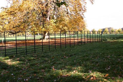 Deer Fencing at Burleigh