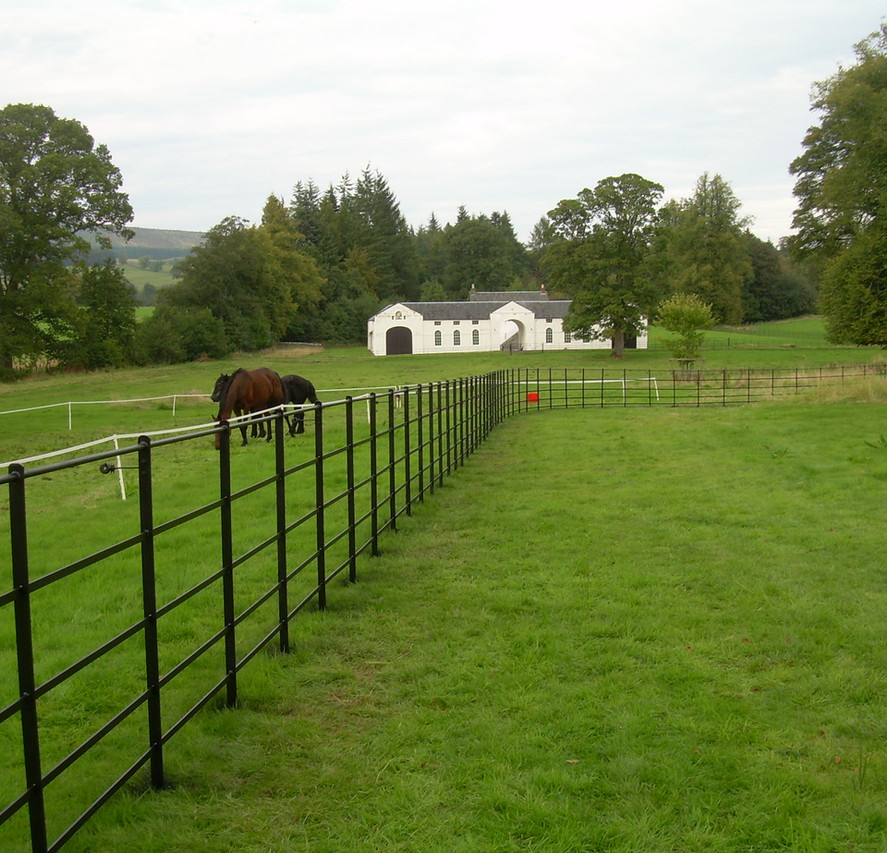 our classic five rail estate fence