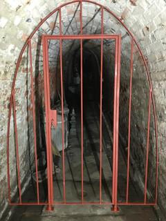 Wine Cellar Gate 1.jpg
