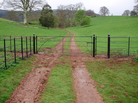 Double Gate with Kissing Gate
