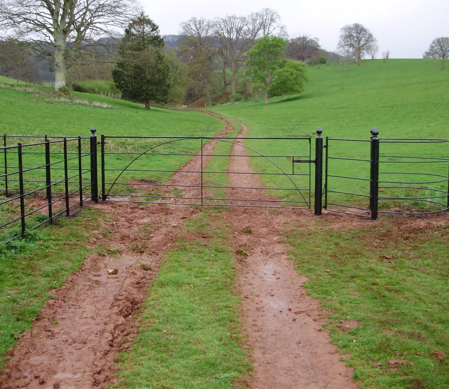 Field Gates 18.jpg