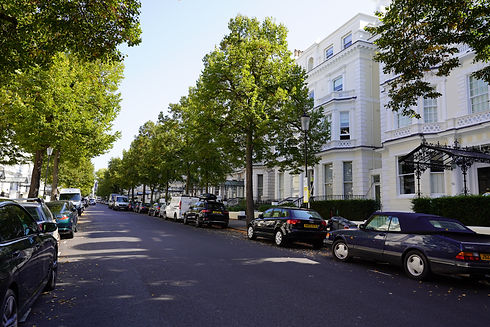 Tree lined avenue with painted railings