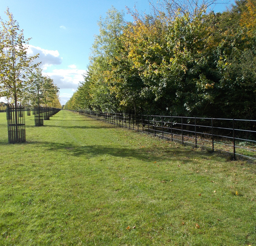 our traditional parkland fencing.