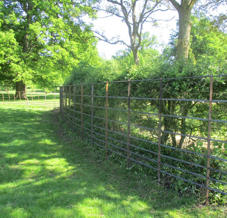 Deer Fence 5.JPG