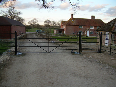 Double Gate Pedestrian and Filed