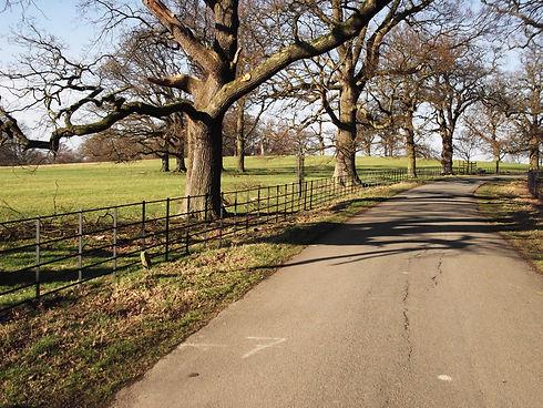 Restored traditional estate fencing