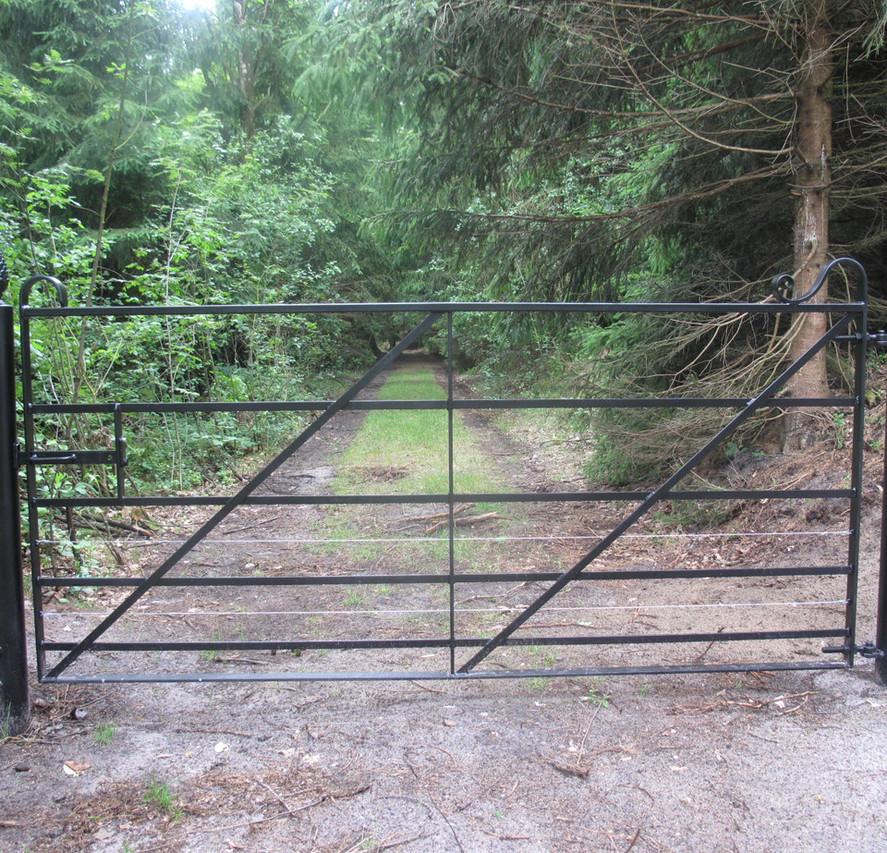 Field Gates 03.jpg