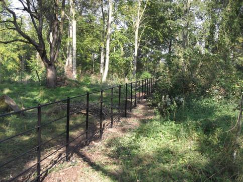 estate fencing through woodland