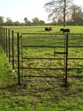 Fabricated Steel Panel Gate