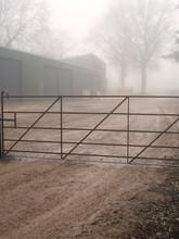 Morning Mist Shrouds Metal Field Gate