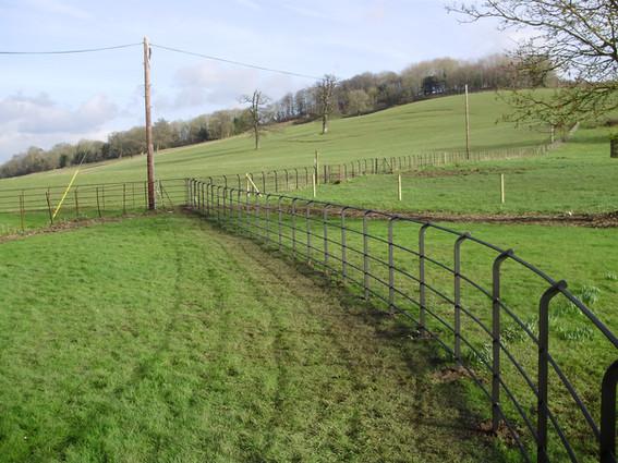 Curve Top Fence 4.JPG