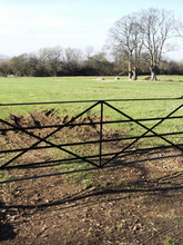 Field Gate with Cast Iron Posts