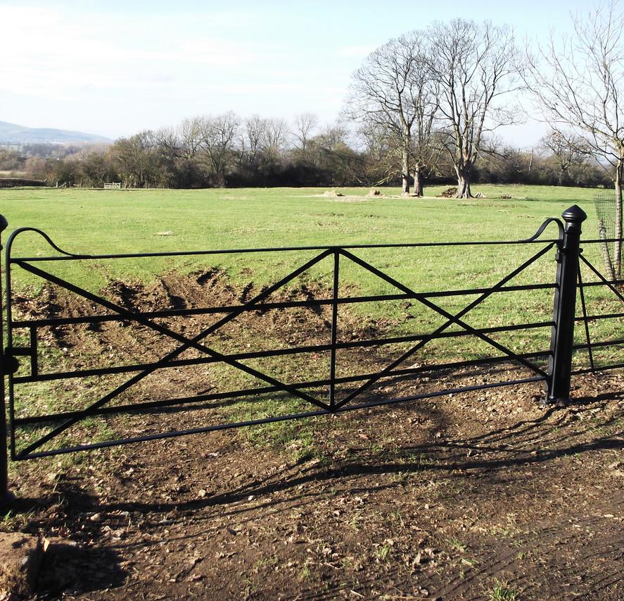 Field Gates 11.JPG
