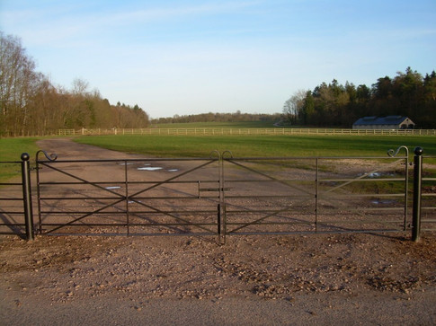 Double Field Gate X design