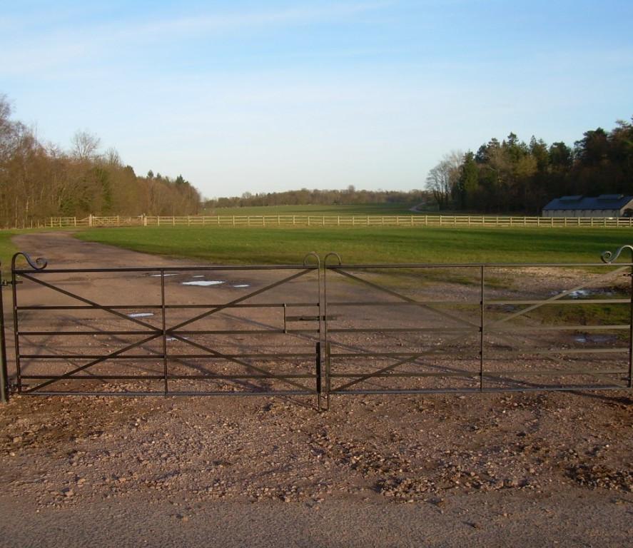 Field Gates 13.JPG