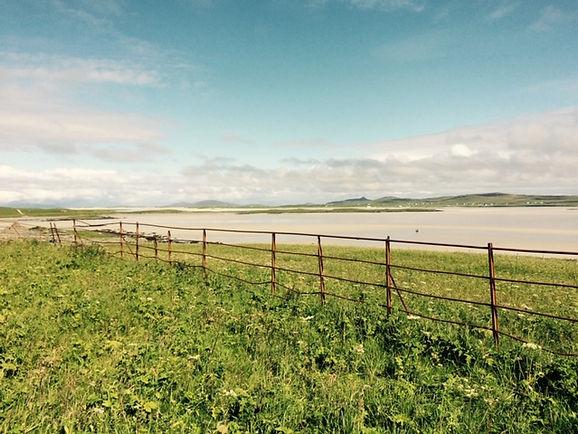Traditional estate fencing pre-restoration