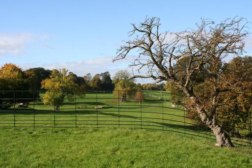 Deer Fencing - Burleigh House
