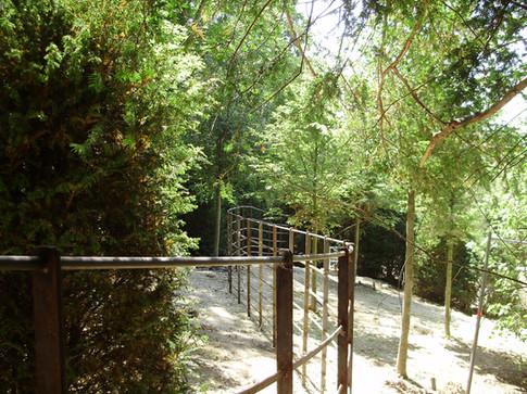 Bare Metal Deer Park Railings