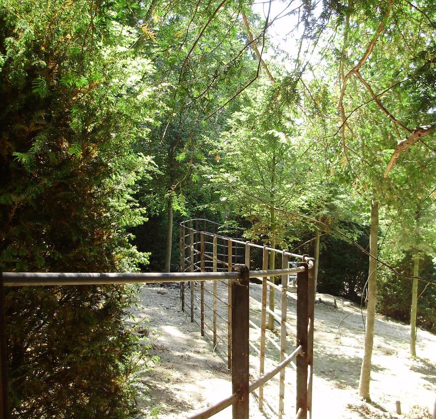 Deer Fence 4.JPG