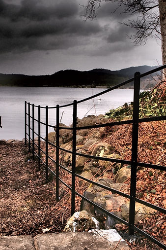 Estate fencing by lake