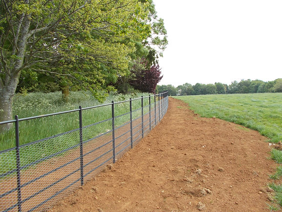 Traditional rabbit netting along estate fencing