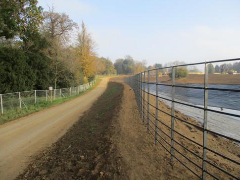 Deer Fencing bordering driveway