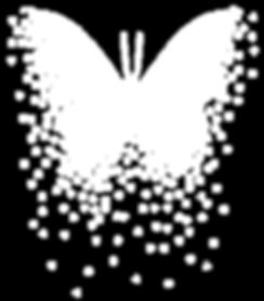 Papillon-blanc2-576.png