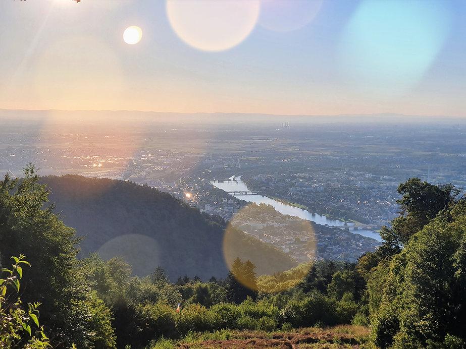 Heidelberg%20von%20oben_edited.jpg