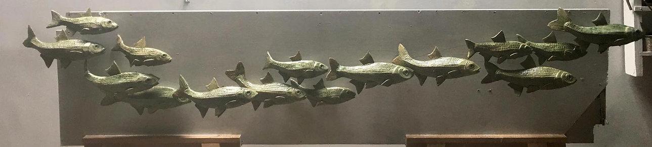 shoal-of-fish.jpg