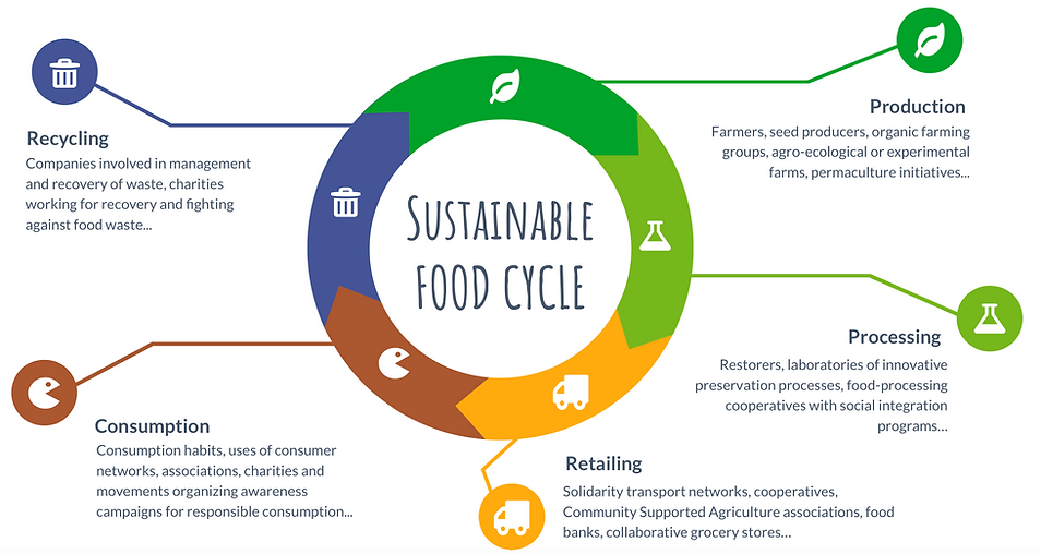 Sustainable Food Cycle - I FEED GOOD