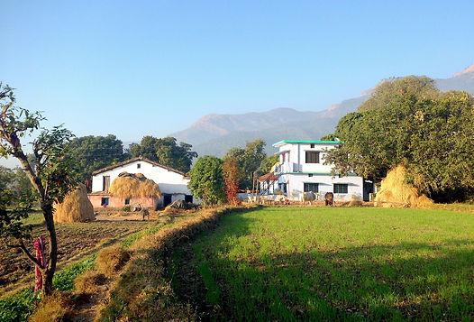 Maison de producteur de riz - Inde du Nord - I FEED GOOD