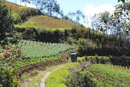 Mission Pérou - I FEED GOOD
