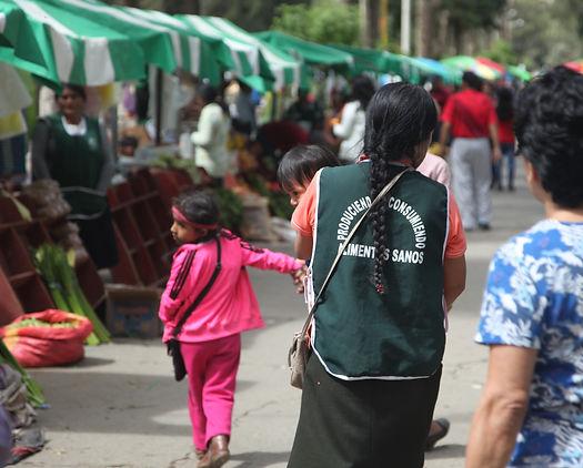 Producteur bio SGP, Mission Pérou - I FEED GOOD