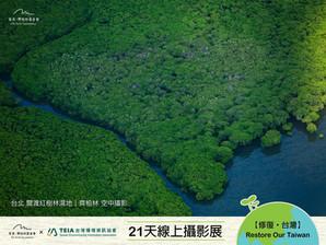 【DAY 13 淡水河上的森林 🌳】