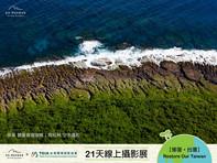 【DAY10 珊瑚正在白化🌊】